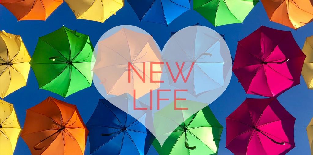 New Life Transformation Program Brand